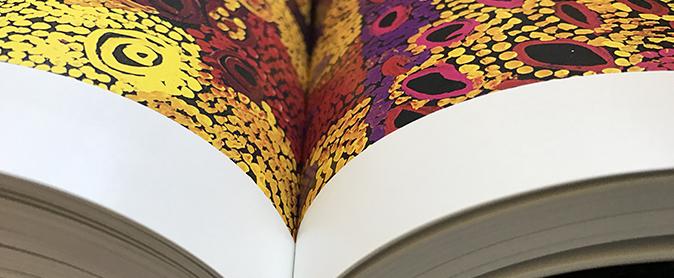 indigenous art book